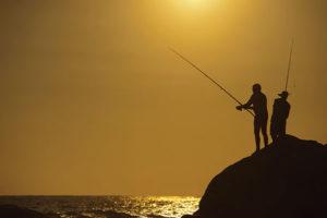 Silver Bay fishing